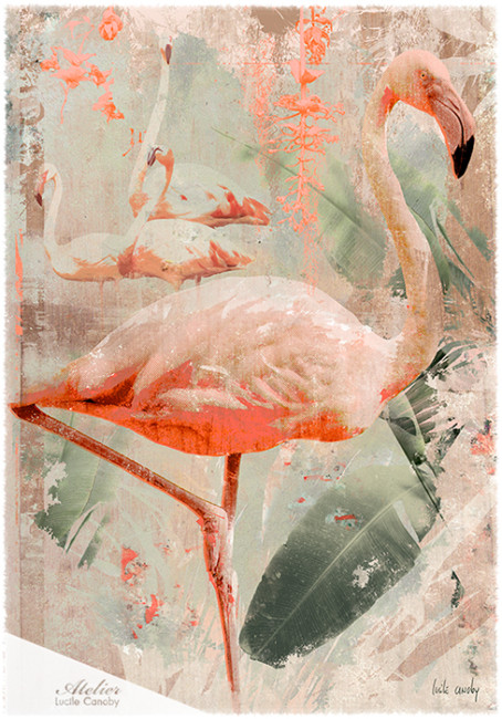 Flamingo-81*116